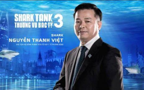 Shark Viet