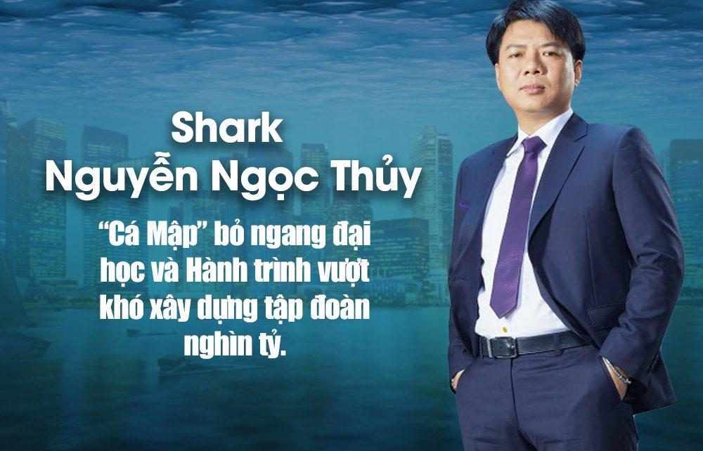 Shark thuy la ai