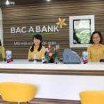 Số tổng đài - Hotline ngân hàng Bắc Á Bank miễn phí hỗ trợ 24/7